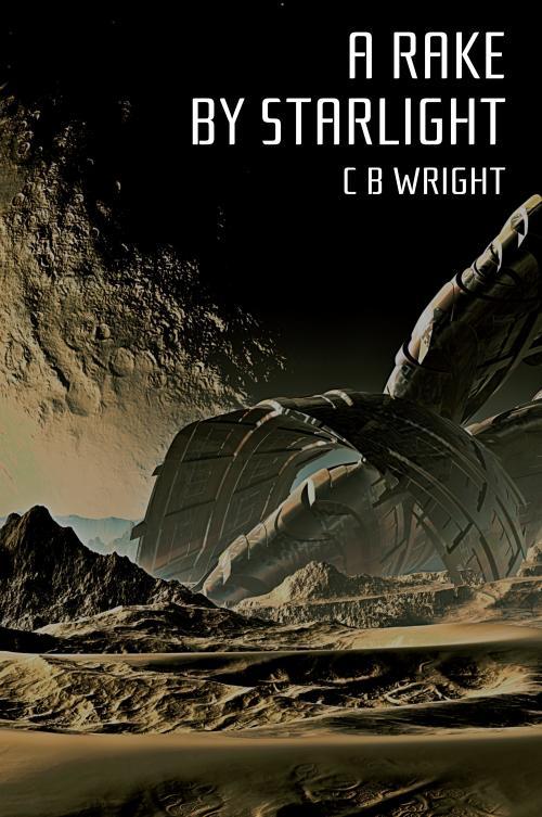 A Rake by Starlight, by C. B. Wright